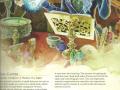 dd_5th_edition_players_handbook_female_elf_wizard_with_spellbook